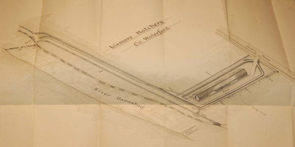 1905 Antique map/chart if the Lismore Hatchery in County Waterford, Ireland. Printed Dublin by Alexander Thom.