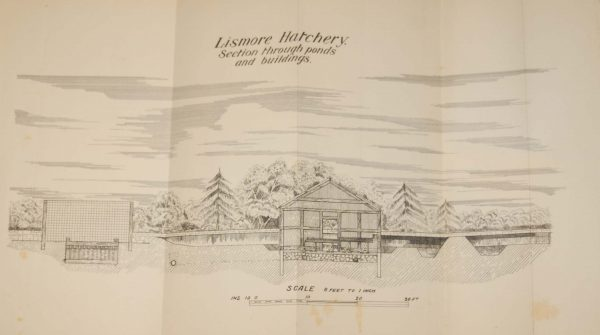 1905 Antique map/chart of the Lismore Hatchery Buildings in County Waterford, Ireland.