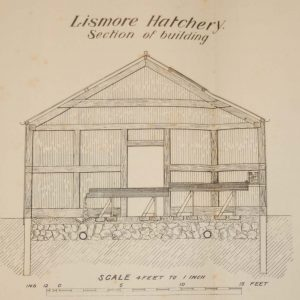 1905 Antique print of a building section in Lismore Hatchery, County Waterford, Ireland.