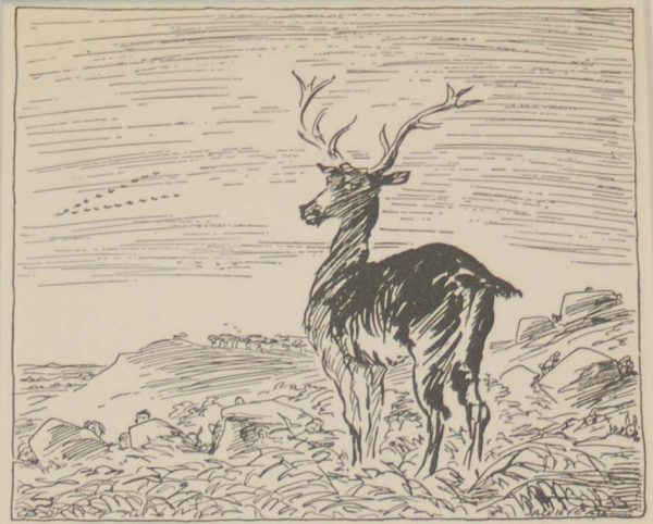 Jack B Yeats He Changed Himself To A Stag 1933 published by The Macmillan Company in New York.